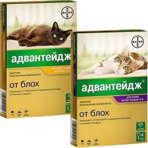 Адвантейдж для кошек