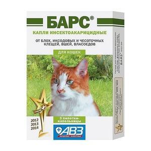 Барс для кошек
