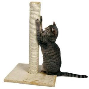 Как приучить котенка к когтеточке