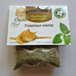 Кошачья мята