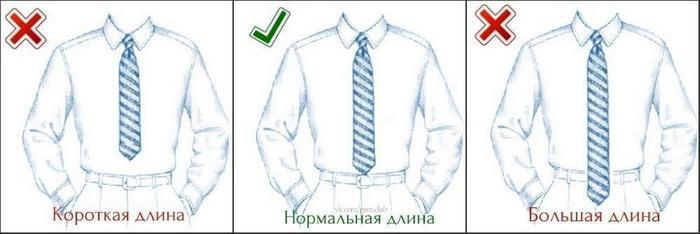 Рисунок для галстука